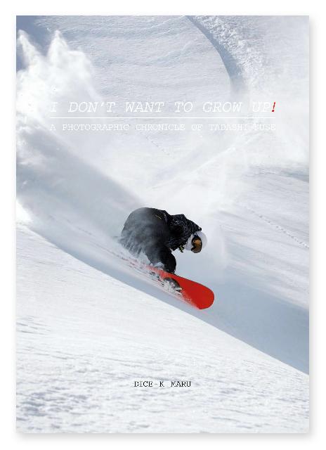0_dice_book_cover